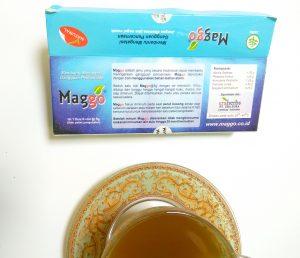 Obat maag herbal