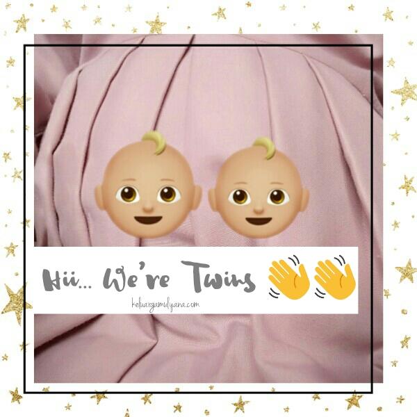 hamil anak kembar